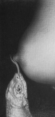 Ольга Акаси. Snake Constellation