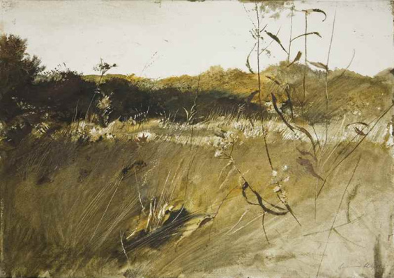 Andrew Wyeth. Above the garden (first version)