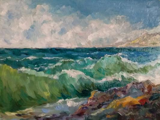 Valentin Nikolaevich Sudnitsyn. On the sea