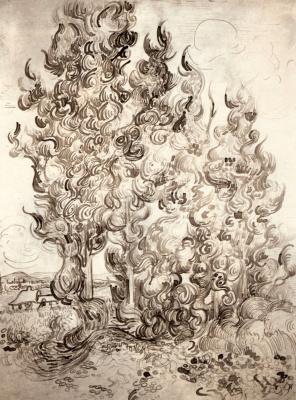 Vincent van Gogh. Cypress