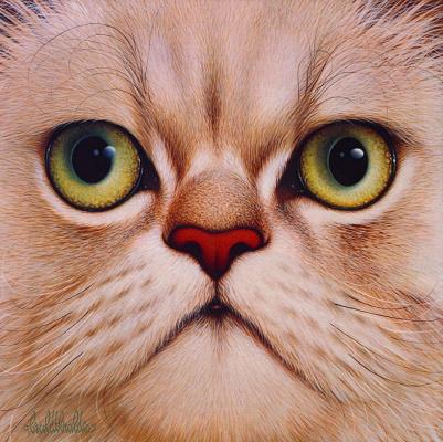 Бралдт Бралдс. Кошка
