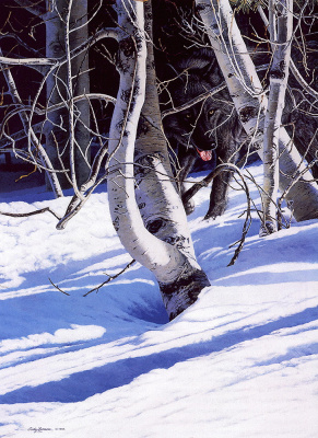 Джуди Ларсон. Снег в лесу