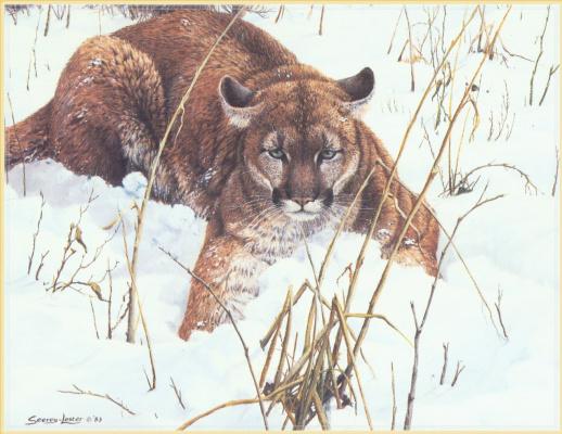 Джон Сирей Лестер. Лежа на снегу