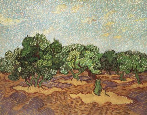 Винсент Ван Гог. Оливковая роща, светло-голубое небо