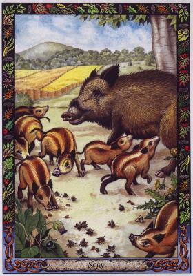 Билл Уортингтон. Свиноматка