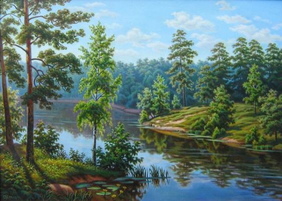 Андрей Никонорович Сутин. The sun over the lake