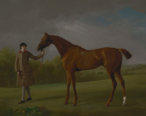 George Stubbs. A horse named Sparkle and his jockey