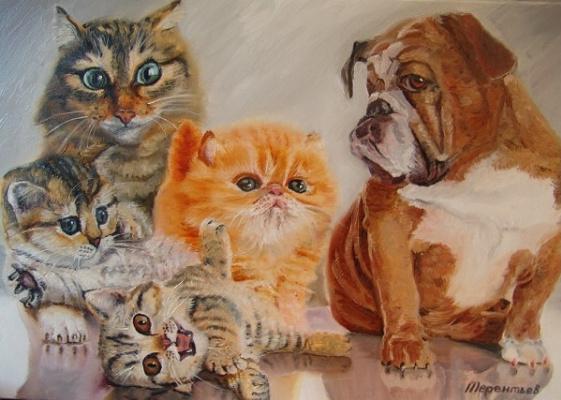 Evgeny Vladimirovich Terentyev. Bulldog and cat family