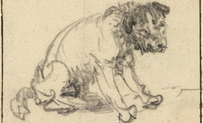 Рембрандт Ван Рейн. Набросок собаки