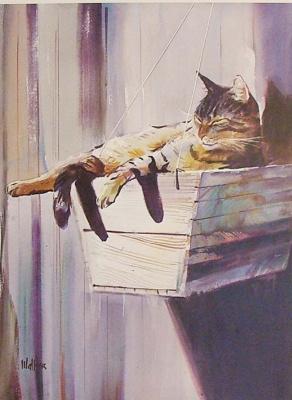 Хесус Эльгера Аусенсиа. Кот