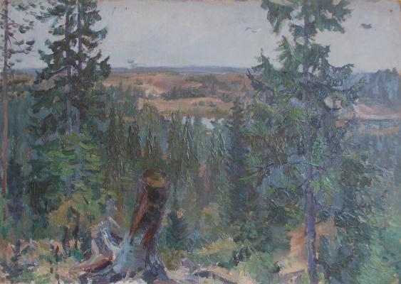 Nina Vasilievna Sedova. Old stump
