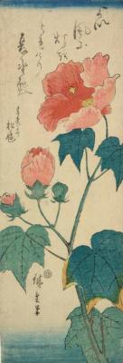 Utagawa Hiroshige. Hibiscus