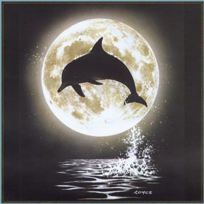 Ройс Макклюр. Дельфины 13