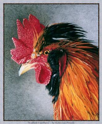Рита Сью Пауэлл. Взъерошенные перья