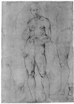 Raphael Santi. Study of a Nude male figure