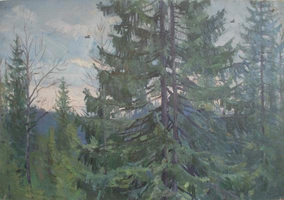 Nina Vasilievna Sedova. In the wilderness