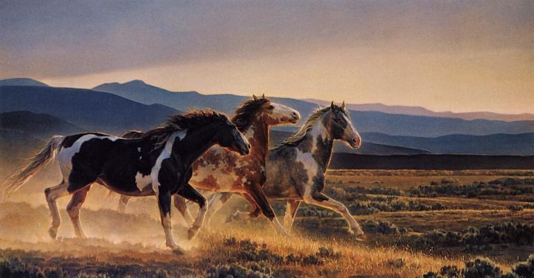 Нэнси Глейзер. Три коня