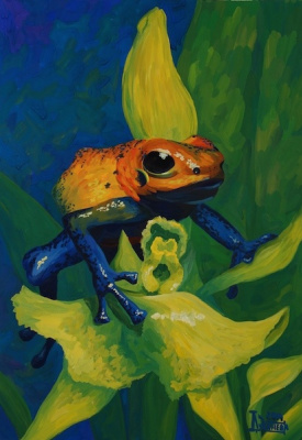 Larissa Lukaneva. The poisonous dendrobates
