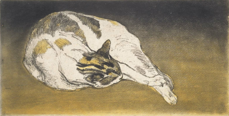 Theophile-Alexander Steinlen. Sleeping cat