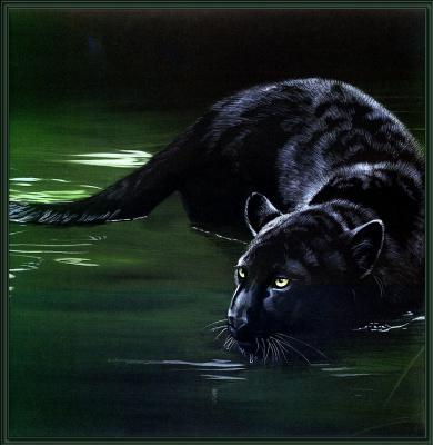 Поллианна Пикеринг. Большие кошки 09