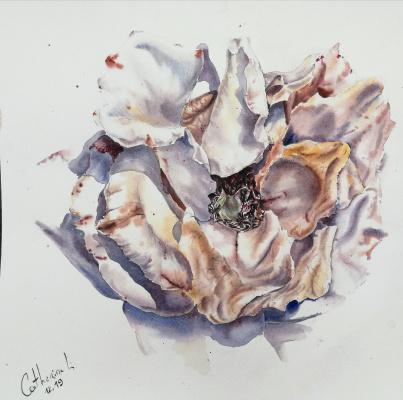 Catherine Lavrushina. Rose