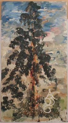 Anatoly Zverev. Pine