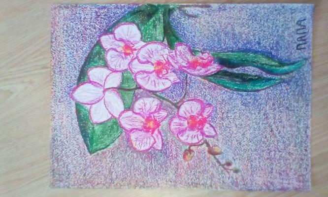 Дмитрий Шульпин. Орхидея