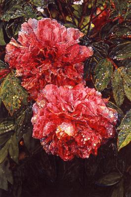 Джозеф Рафаэль. Красные цветы