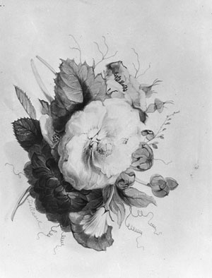 Джеймс Холланд. Цветок
