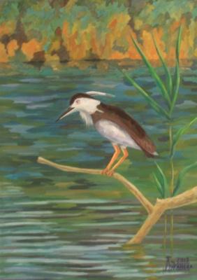 Larissa Lukaneva. River bird