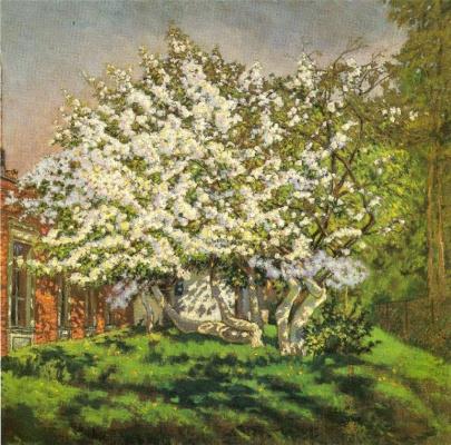 Николай Григорьевич Бурачек. Blooming apple tree