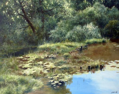 Сергей Владимирович Дорофеев. Silent Creek
