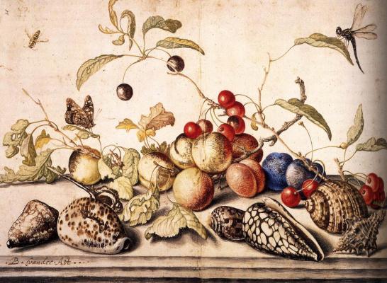 Baltazar van der Ast. Still life with cherries, plums and sinks