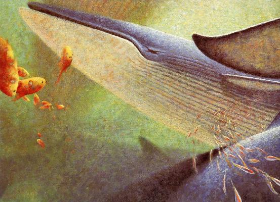 Песни китов 01