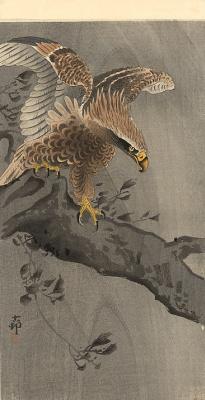Охара Косон. Птицы 84