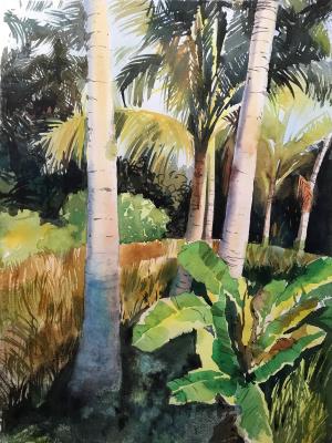 Anastasia Volkova. Palm trees