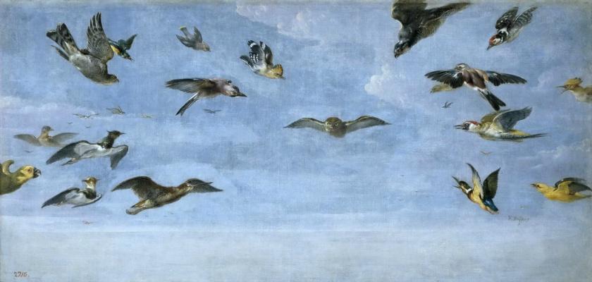 Франс Снейдерс. Сова и стая птиц