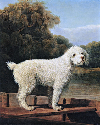 George Stubbs. White poodle in a boat