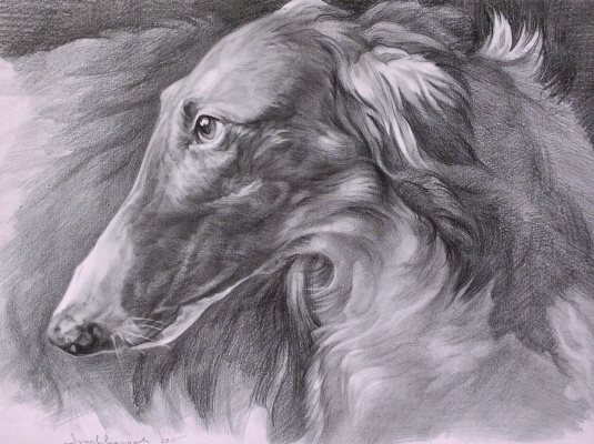 Yuri Ivashkevich. Greyhound
