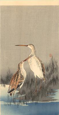 Охара Косон. Птицы 97