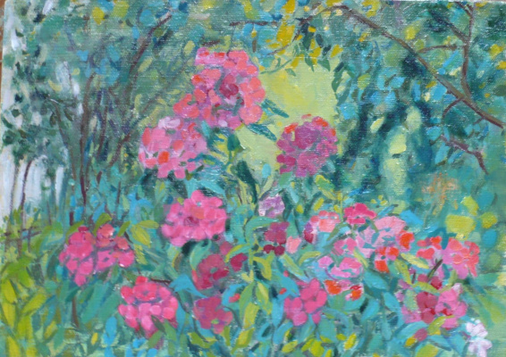 Elena kuvina. Цветы  в саду