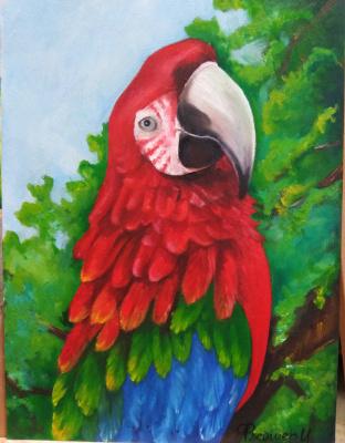 Inna Fleisher. Amazing bird