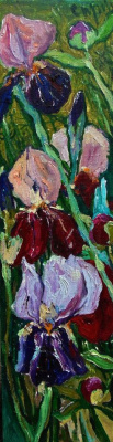 Alexandra Sirbu. Irises