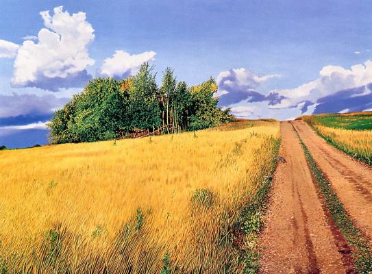 Даун Маккраккен. Дорога в поле