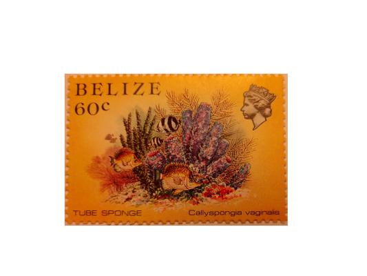 "Arthur Gabdrupes. ""Image"": ""Brand""; Mail: Belize. ""Archiv"" (w) (2)"