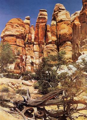 Питер Холбрук. Нижний слоновий каньон