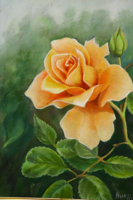 Nikolay Nikolaevich Vinogradov. Yellow rose