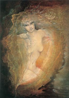 Susan Seddon Boulet. Venera 1