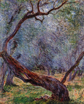 Claude Monet. Olive-tree (etude)