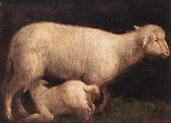 Jacopo da Ponte Bassano. Sheep and lamb
